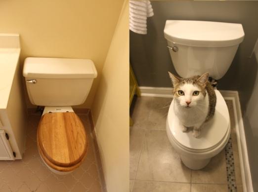 toiletbeforeandafter