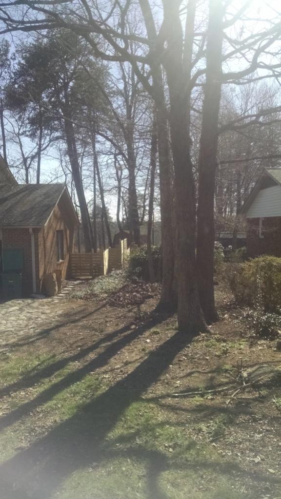 sideyard1