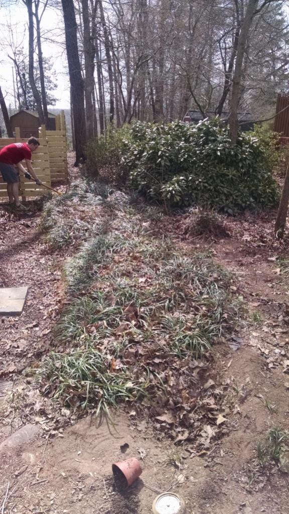 sideyard3